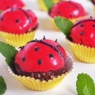 Homemade Ladybug Candy